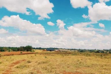 Olive Estate- Kenyatta Road